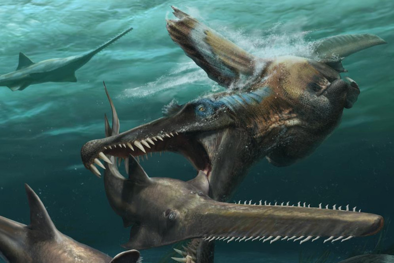 Artists impression of Spinosaurus hunting underwater